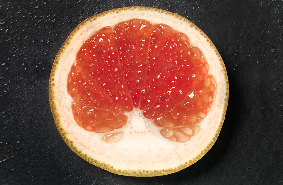 Grapefruit 0000 0003